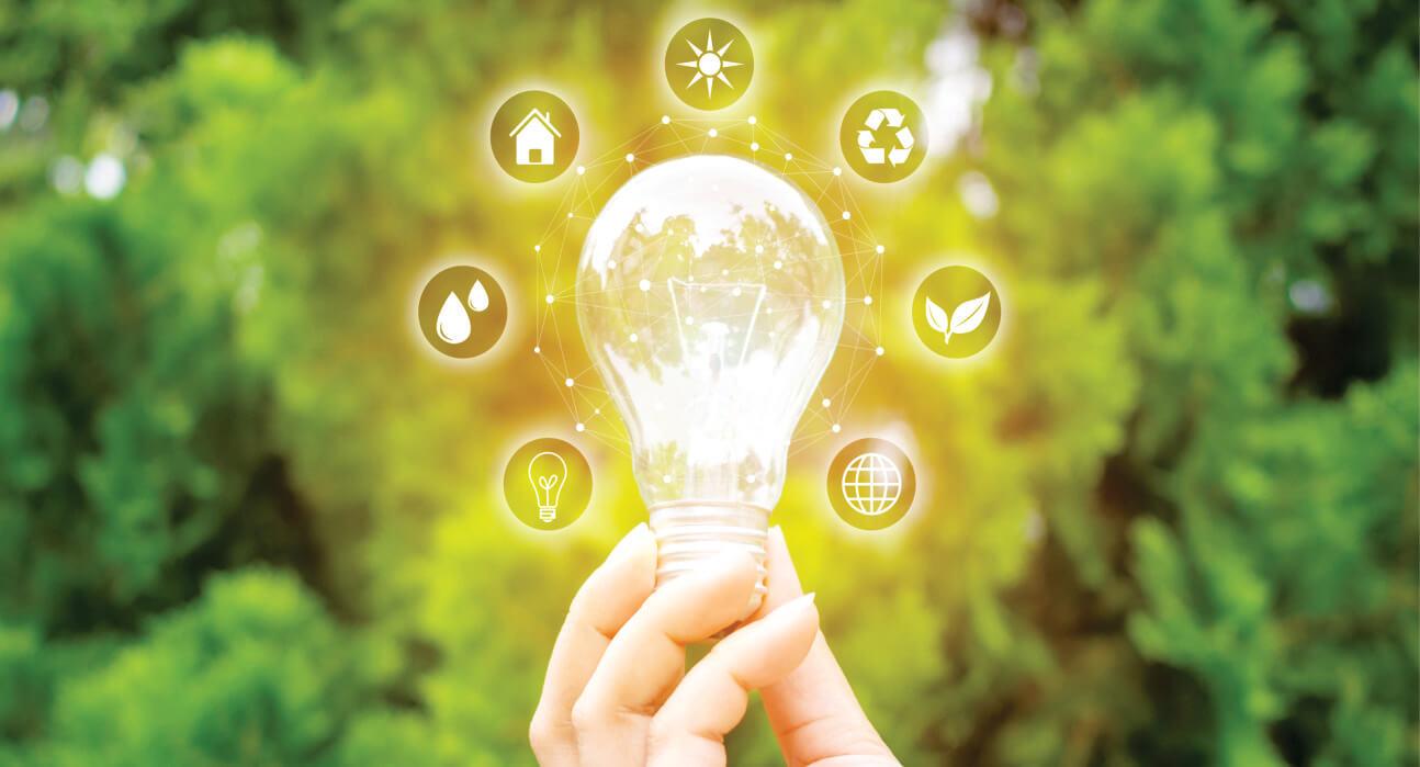 A Sustentabilidade Praticada Através Das Empresas